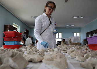 A foreigner conservator works on pieces of statues damaged by the Taliban, in Nation museum in Kabul, Afghanistan