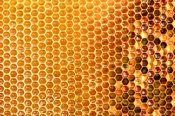 Photo sur Aluminium Bee Background texture and pattern of a section of wax honeycomb from a bee hive filled with golden honey i