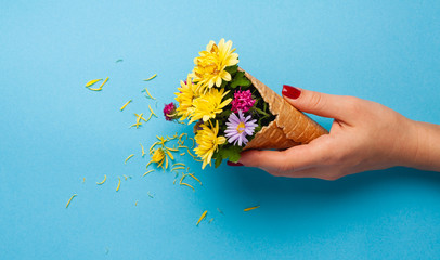 Girl holds an original bouquet of flowers on a colored background.