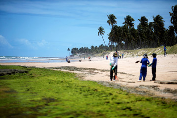 People work on removing an oil spill on Coruripe beach, Alagoas state
