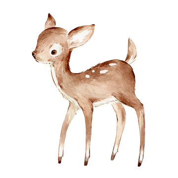 Cute Watercolor Drawing of the Baby Deer over white. Foreat anomals Baby Deer full profile Illustration. Isolated. Baby Nursery Illustration for Print poster etc