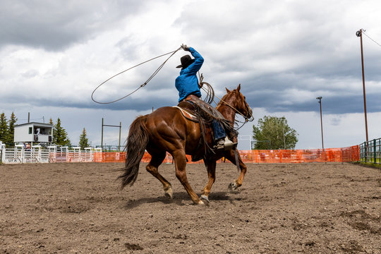 Rodeo Bronco Riding in Canada