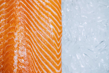 Close up of fresh salmon on ice, Top view