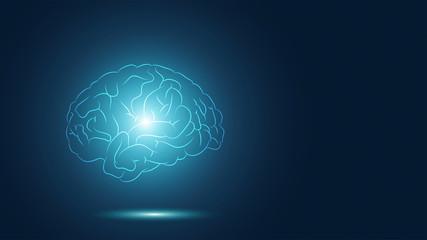 cervello, sagoma, ipofisi, attività cerebrale, neuroni, ipotalamo