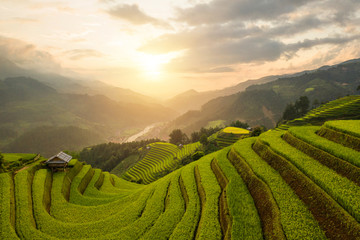 Printed roller blinds Rice fields Aerial top view of paddy rice terraces, green agricultural fields in countryside or rural area of Mu Cang Chai, Yen Bai, mountain hills valley at sunset in Asia, Vietnam. Nature landscape background.