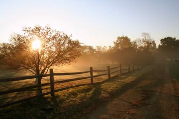 Rural Sunrise Fotoväggar
