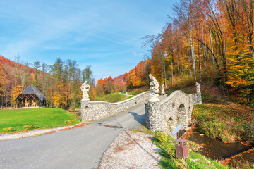 wonderful autumn scenery in the park. bridge across the forest brook. trees in fall foliage. footpaths among green grassy lawns.  wonderful sunny weather with blue sky. great day for a relaxing walk