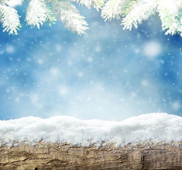 Winter snow bright background. Christmas landscape with wood, snowdrifts and pine branches in the frost.