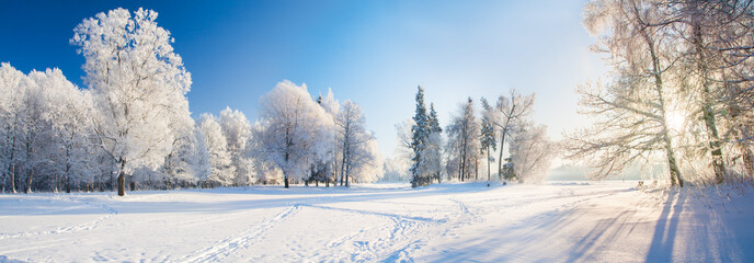Photo on textile frame Blue sky Panorama of beautiful winter park