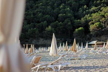 Folded parasols at morning at beach