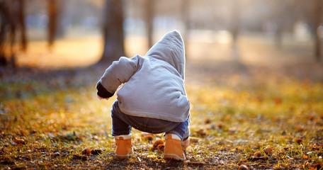 Toddler boy playing outdoors
