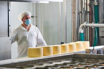 Dairy factory. worker at cheese food production conveyer