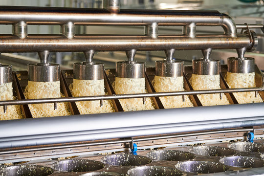 forming machine at cheese food production factory