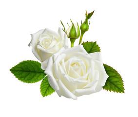 Rose flowers in a floral arrangement
