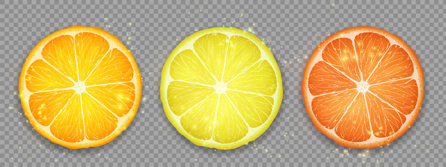 Slice of citrus fruit lemon, orange and grapefruit.