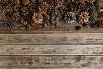 Cones of coniferous trees on the old wooden vintage background. Natural wood. Rustic style. The view from the top. Space for text.