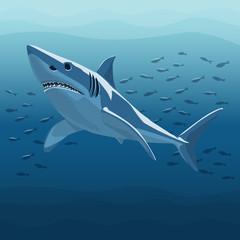 Vector Illustration Of White Shark