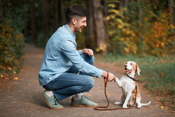kind attractive man teaching his dog to greet, nice to meet you. full length side view photo