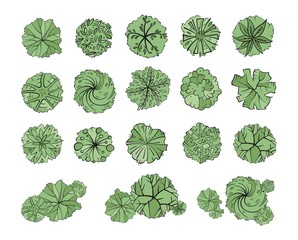 Papiers peints Olive Various green trees, bushes and shrubs, top view for landscape design plan. Vector illustration, isolated on white background.