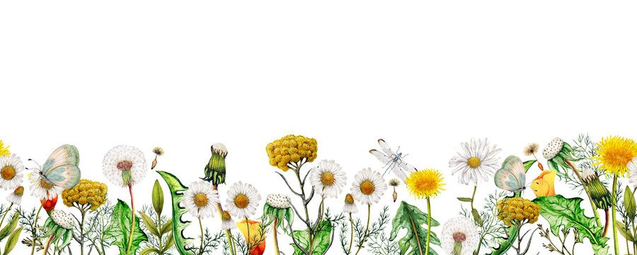 Watercolor seamless banner of garden wildflowers,Seamless floral border
