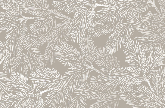 Winter background with pine branches. Winter card design.