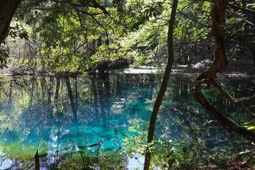丸池様(山形県遊佐町),maruike pond(yuza town,yamagata pref,japan)