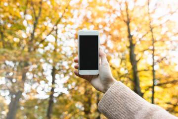 Fototapeta Dziewczyna robi zdjęcie kolorowym drzewom.  obraz