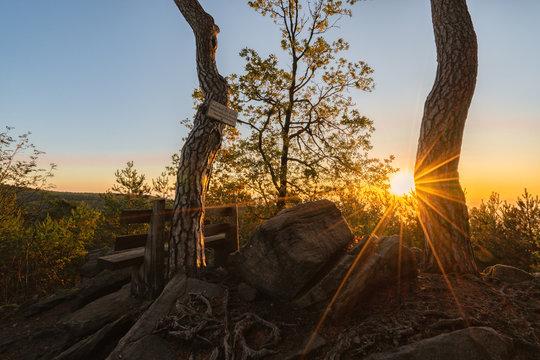 Sonnenaufgang im Wald