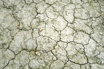 Terre sèche blanche et grise craquelée.