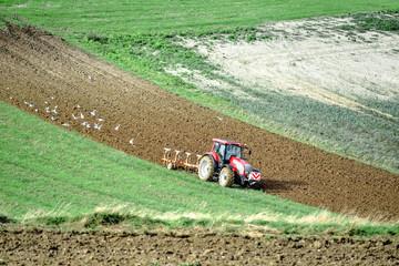 Poster de jardin Olive beau paysage avec un agriculteur labourant ses champs en automne
