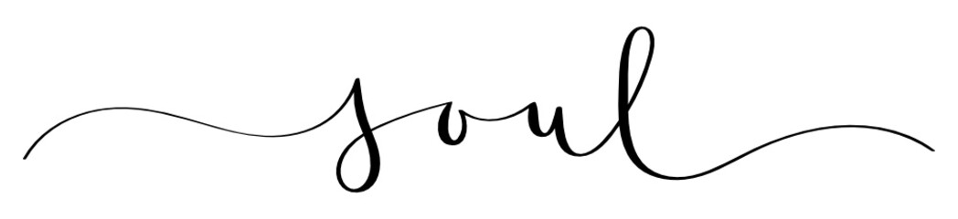SOUL vector brush calligraphy banner
