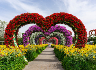 Dubai,UAE / 11. 06. 2018 : Colorful heart shaped flowers alley in Dubai Miracle Garden