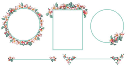 Apple blossom frames and dividers