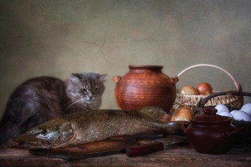 Still life with pike fish and afraid kitty
