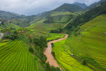 Garden Poster Rice fields Aerial top view of paddy rice terraces, green agricultural fields in countryside or rural area of Mu Cang Chai, Yen Bai, mountain hills valley at sunset in Asia, Vietnam. Nature landscape background.