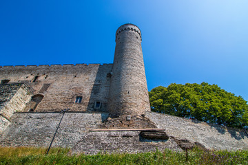 The historic Pikk Hermann tower in Tallinn, the capital of Estonia.