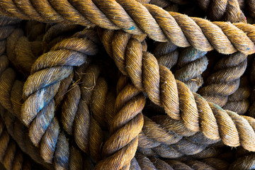 Coiled nautical rope close up with detailed texture