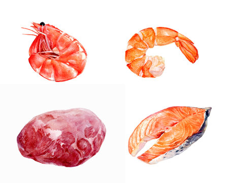 Meat shrimp salmon set composition watercolor isolated on white background