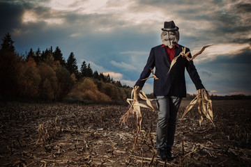scarecrow stands in the autumn field against the evening sky Fototapete