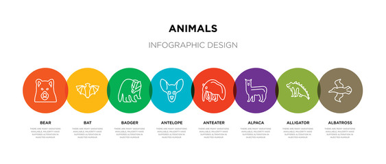 8 colorful animals outline icons set such as albatross, alligator, alpaca, anteater, antelope, badger, bat, bear