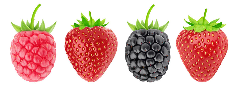 Multicolored collection of assortment of berries: strawberry, raspberry and blackberry isolated on a white background with clipping path.