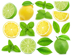 Large collection of citrus fruits - lime and lemon isolated on a white background in full depth of field with clipping path.