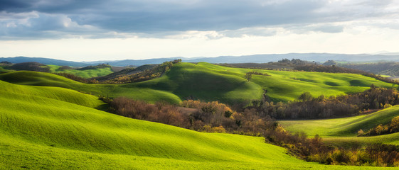 Spring fields in Tuscany / Amazing Tuscany landscape with green rolling hills in spring sunny morning