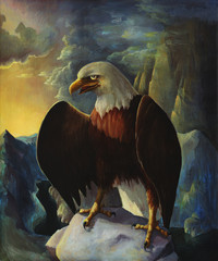 Bald eagle in mountains oil painting landscape with rocks, wild bird drawing in nature, hand drawn american eagle illustration.