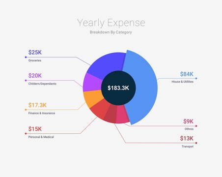 Domestic yearly expenses breakdown chart on white isolated background vector and illustration