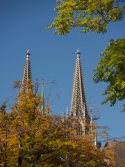 View of Regensburg cathedral towers through colorful trees in autumn