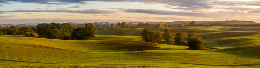 panorama of a green field in autumn scenery