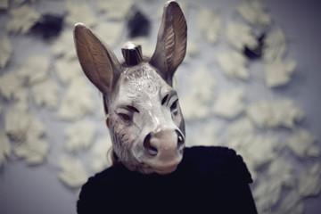 Tuinposter Ezel donkey selfie