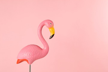 Tuinposter Flamingo pink flamingo on a pink background