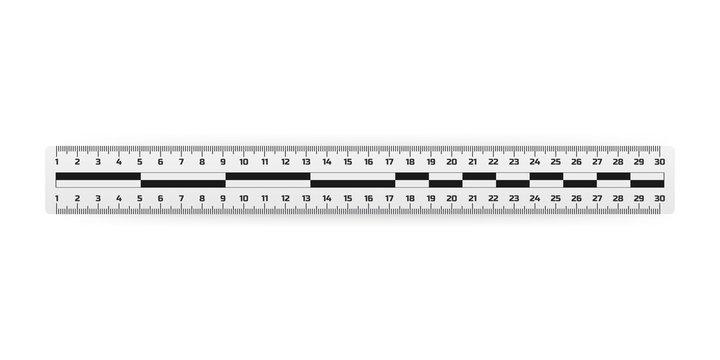 Analysis of the crime scene judicial measuring ruler, ruler lines for inspection of the crime scene. Vector illustration.